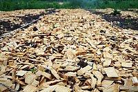 mulch-chips.jpg