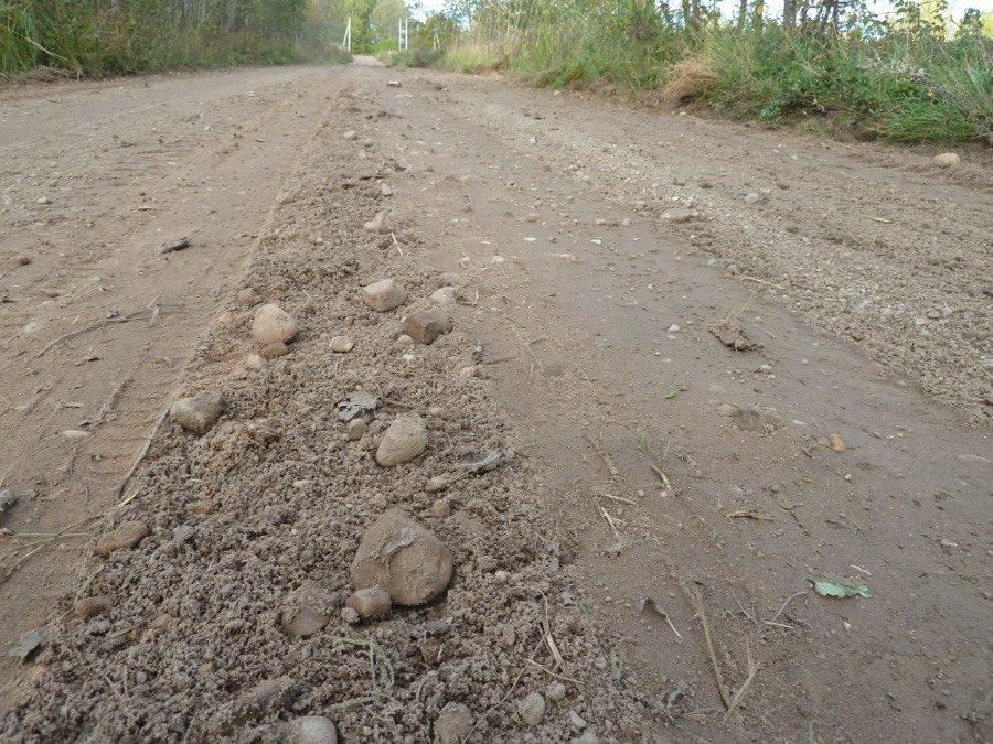 road-stones.jpg