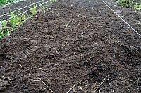 soil-kulti.jpg