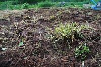 soil-moto.jpg